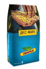 ДКС 4685 ФАО 340 Семена кукурузы Монсанто