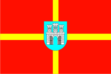 Флаг Житомирской области 0,9х1,35 м. атлас