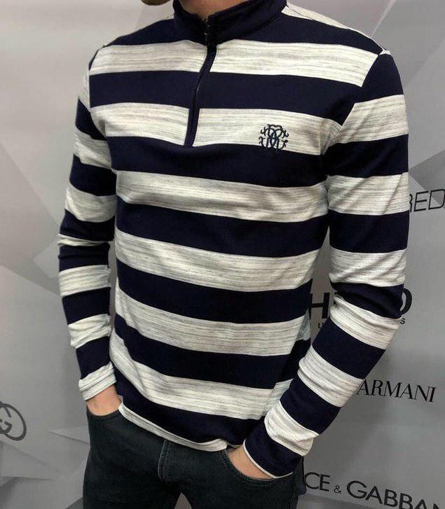 Кофта мужская Roberto Cavalli D5485 сине-белая