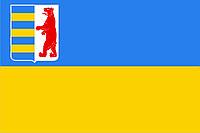 Флаг Закарпатской области 0,9х1,35 м. для улицы флажная сетка