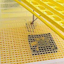 Инкубатор Теплуша Europe 112, фото 3
