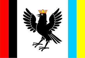 Флаг Ивано-Франковской области 0,9х1,35 м. для улицы флажная сетка