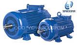 Крановый электродвигатель МТK 132LA-6 5,5 кВт 900 об/мин, фото 2
