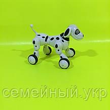 Собака робот  Smart Pet 619 , говорящая интерактивная игрушка на радиоуправлении, фото 2