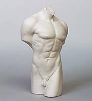"""Фарфоровая статуэтка """"Торс мужчины"""" (Бисквит) WS-101/ 1"""
