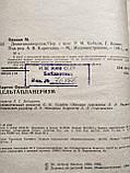 Дельтапланеризм М.Ордоди, фото 3