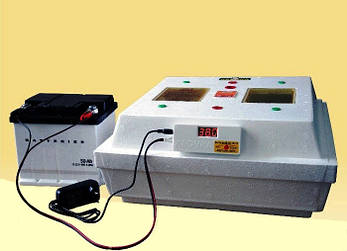 Інкубатор Квочка МІ-30-1Е-12, фото 2