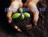 Грунт для газону Київ Субстрат в мішках по 50-60 літрів Торф Київ, фото 2