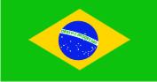 Флаг Бразилии 0,9х1,3 м. материал для уличного применения флажная сетка