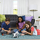 Интерактивная собака робот-игрушка Zoomer Playful Pup от Spin Master, фото 8