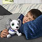 Интерактивная собака робот-игрушка Zoomer Playful Pup от Spin Master, фото 10