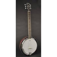 Банджо Richwood RSB-306