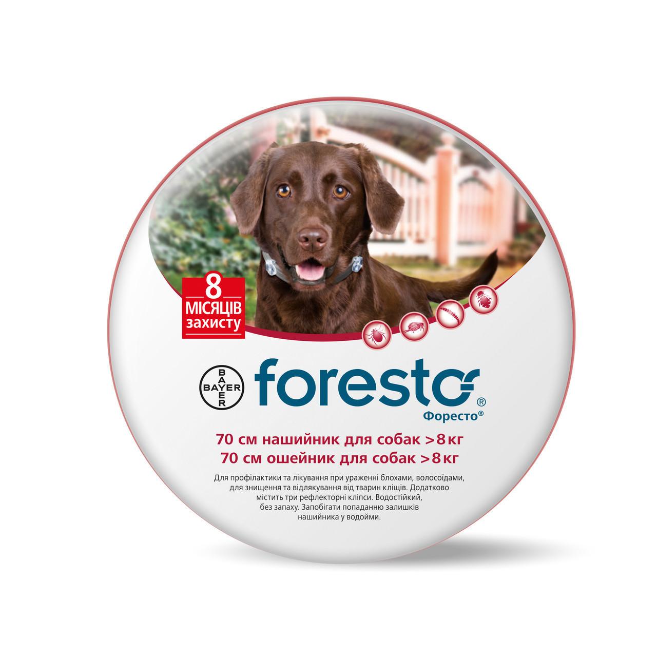 Ошейник Bayer Foresto (Форесто) блох и клещей для собак, 70 см