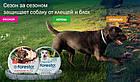 Ошейник Bayer Foresto (Форесто) блох и клещей для собак, 70 см, фото 2
