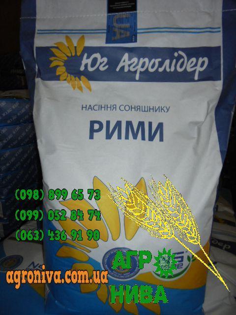 Семена подсолнечника Римми Юг Агролидер