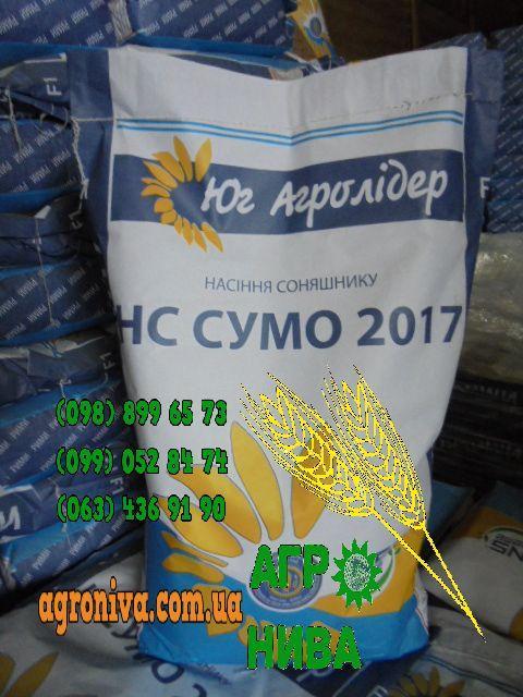Семена подсолнечника НС-СУМО-2017