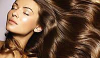 Травяные шампуни для волос
