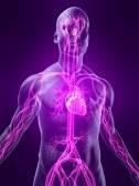 Как правильно поставить диагноз? Сердечно-сосудистая система.