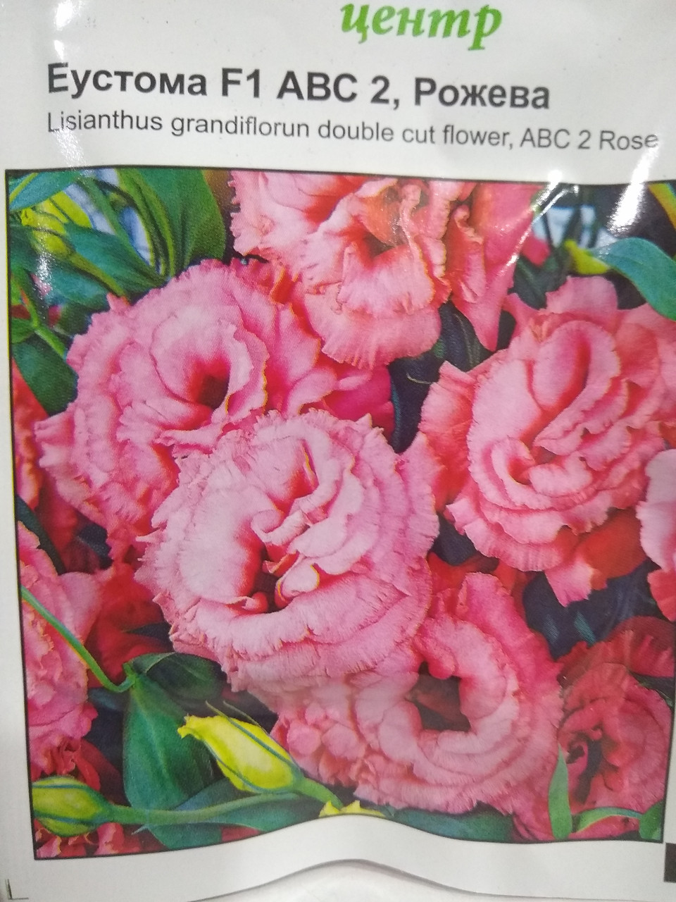 "Эустома (лизиантус) F1,  ABC2, розовая, 10 семян, ""Пан Американ"", Голландия"