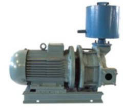Насос ВВН 1-1,5 (ВВН1-1,5)  с дв. 5,5кВт/1500об вакуумный водокольцевой Бессоновский