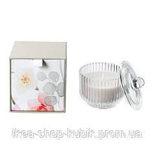 ИКЕА BLOMDOFT Ароматическая свеча в стакане, Гладиолус, серый, 9 см