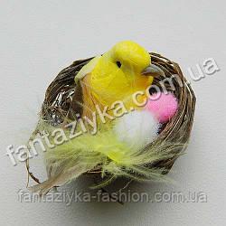 Маленькая желтая птичка в гнезде 4см
