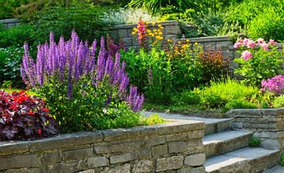 Ландшафтный дизайн. Работы по озеленению територий. Уход за садом. Материалы для сада.