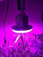 Фитолампа Е27 16Вт для цветов, зелени, рассады, фото 1