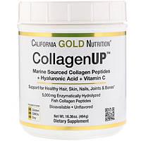 CollagenUP 5000 - рыбный коллаген, CGN, 464 г