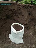 Грунт для газону Київ Земля для посіву газону купити Київ Грунт для рулонного газону, фото 5