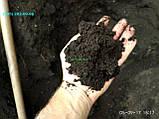 Чорнозем в мішках Київська область купити чорнозем Київ грунт для посадки, фото 2