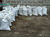 Чорнозем в мішках Київська область купити чорнозем Київ грунт для посадки, фото 5