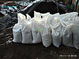 Чернозем в мешках Киевская область купить чернозем Киев грунт для посадки, фото 7