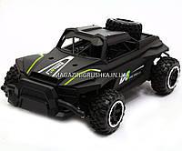 Машинка игровая джип на радиоуправлении 1:16 (G03058R) Черный