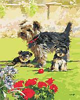 Художественный творческий набор, картина по номерам На прогулке, 40x50 см, «Art Story» (AS0414), фото 1