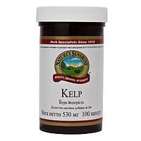 Препарат йода --Келп  НСП.Источник природного йода,витаминов и минералов.100 капсул,США