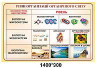 """Стенд для кабинета биологии """"Уровни организации органического мира"""""""