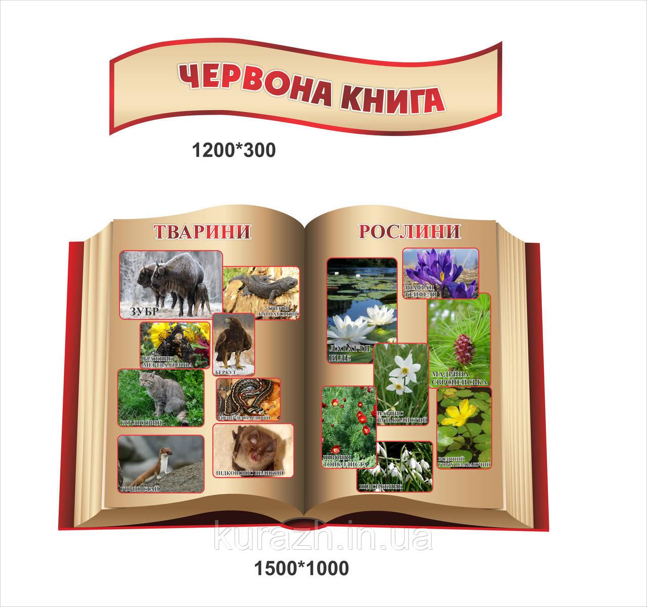"""Стенд для кабинета биологии """"Красная книга"""""""