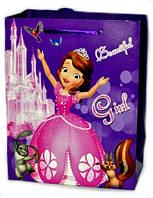 Подарочные пакеты детские Принцессы 4 вида 23х18х10 см
