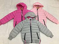Куртка для девочек оптом, F&D, 8-16 лет,  № 0520В, фото 1