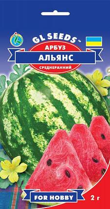 Арбуз Альянс, пакет 2г - Семена арбуза, фото 2