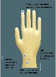 Рукавички ProFeel PLATINUM PF хірургічні латексні неопудрені, фото 2