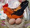 Петушок с яичами