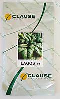 Семена шпината Лагос LAGOS  250г ( до 02.2018г)(м), фото 1
