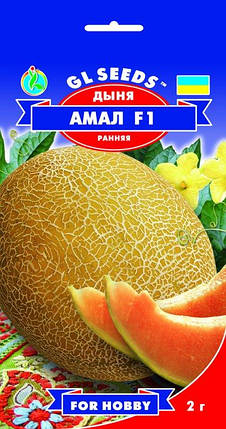 Дыня Амал F1, пакет 2г - Семена дыни, фото 2