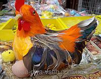 Петушок с яйцом