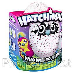 Hatchimals Хетчималс интерактивный питомец Вылупляется САМ из яйца