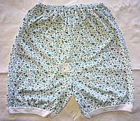 Женские хлопковые панталоны оптом