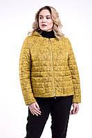 Куртка женская демисезонная, размер 48 50 52 54 56 58 60 62 64, цвет фисташка