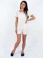 Пижама женская с шортами (S-XL)